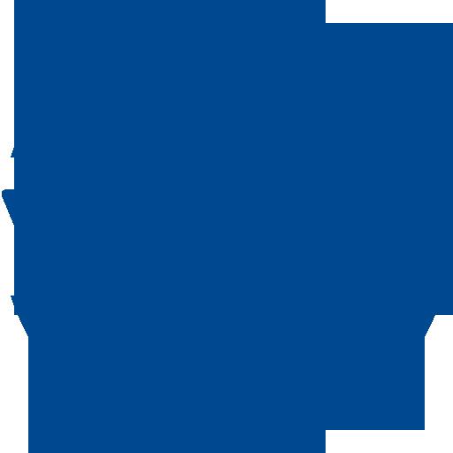 Domain Ticareti